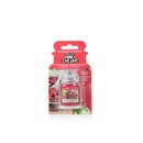 Red Raspberry Car Jar Ultimate 30 g